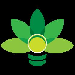 شرکت تصمیم سبز